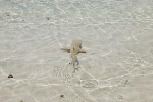 Malediven Holiday Island Resort Reiseblog Marcel Kleusener